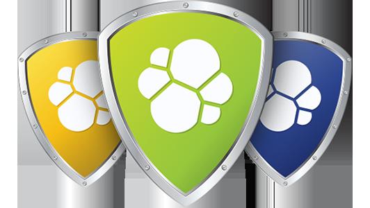 Webinar: Elastic Shield